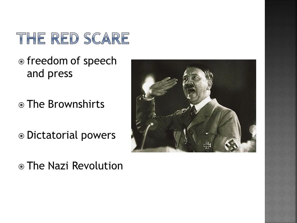  freedom of speech and press  The Brownshirts  Dictatorial powers  The Nazi Revolution