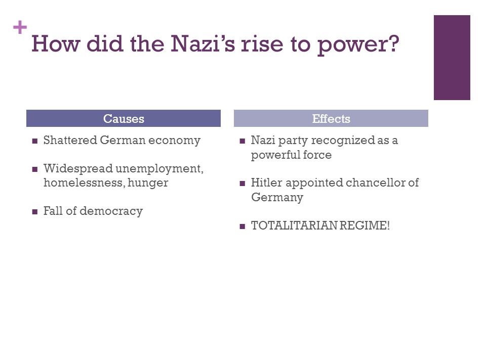 + How did the Nazi's rise to power.