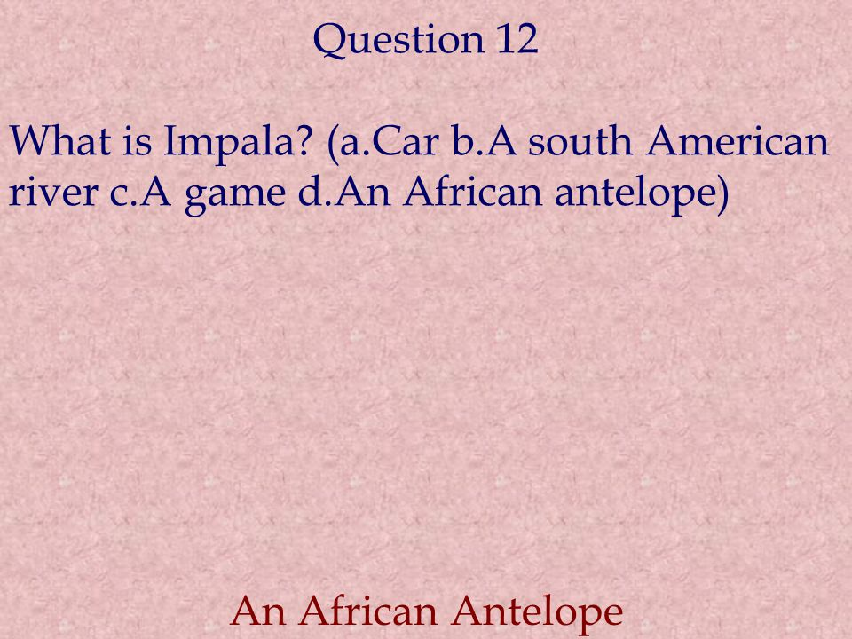 Question 12 What is Impala? (a.Car b.A south American river c.A game d.An African antelope) An African Antelope