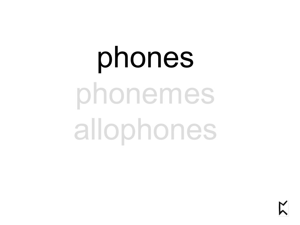 phones phonemes allophones