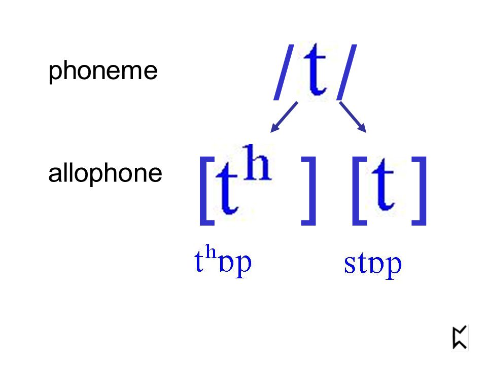 phoneme allophone / [ ]