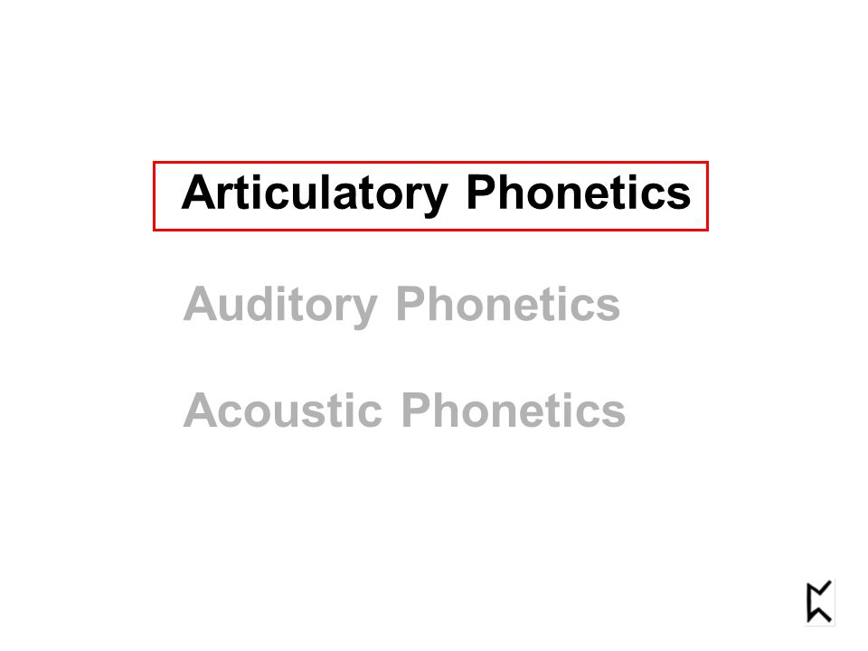 Articulatory Phonetics Auditory Phonetics Acoustic Phonetics