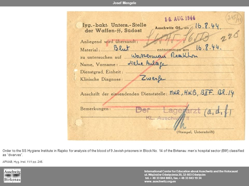 Order to the SS Hygiene Institute in Rajsko for analysis of the blood of 9 Jewish prisoners in Block No.