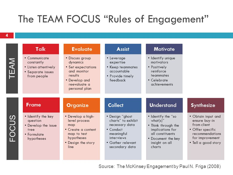 The TEAM FOCUS Rules of Engagement 4 Source: The McKinsey Engagement by Paul N.