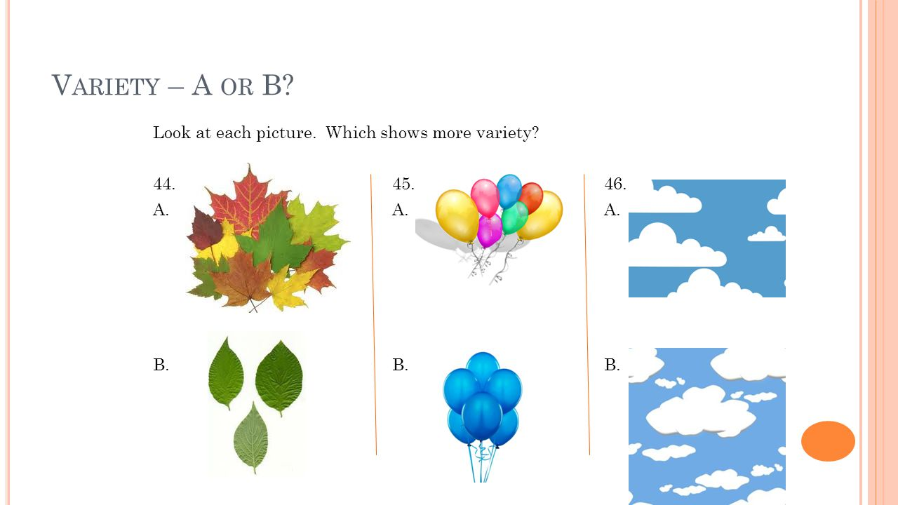 V ARIETY – A OR B? Look at each picture. Which shows more variety? 44. 45. 46. A. A. A. B. B. B.