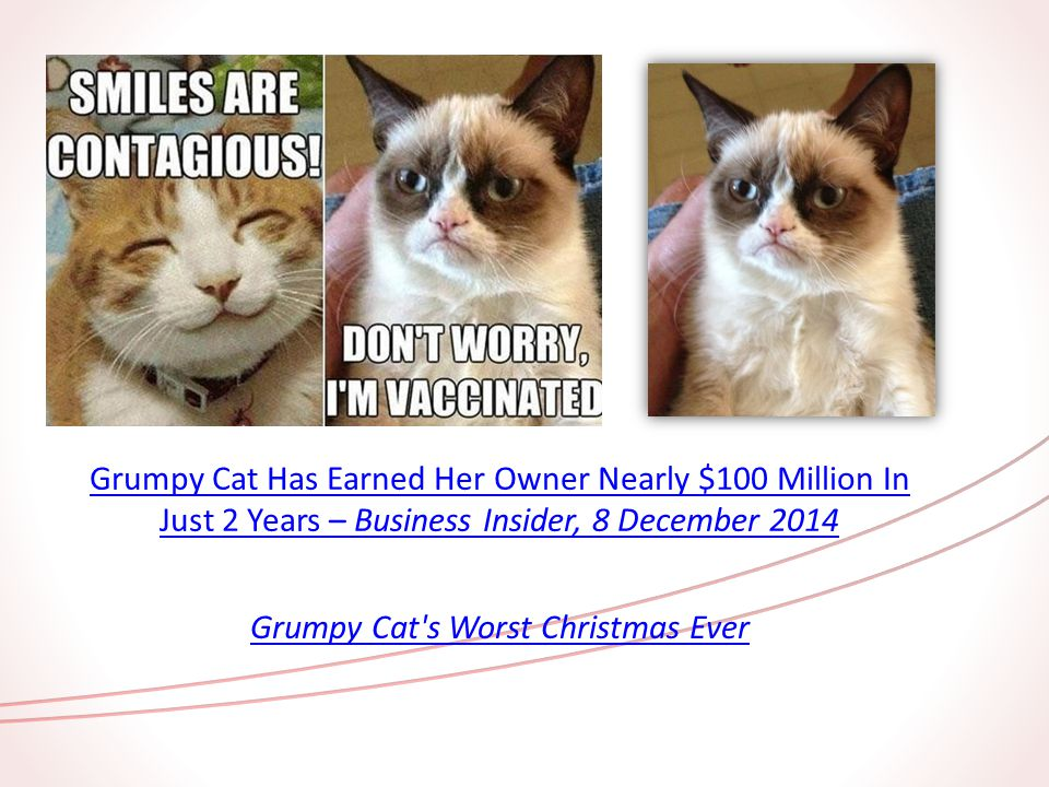 Grumpy Cat Has Earned Her Owner Nearly $100 Million In Just 2 Years – Business Insider, 8 December 2014 Grumpy Cat s Worst Christmas Ever