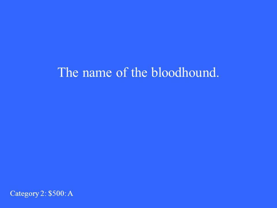 Who are Iamia? Category 2: $400: Q