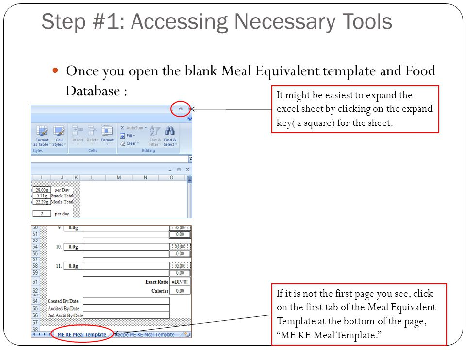 Step #1: Accessing Necessary Tools Once you open the blank Meal Equivalent template and Food Database : It might be easiest to expand the excel sheet