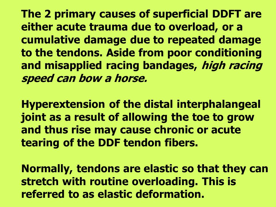 The 2 primary causes of superficial DDFT are either acute trauma due to overload, or a cumulative damage due to repeated damage to the tendons.