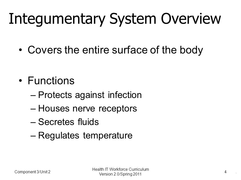 . Integumentary System Overview Covers the entire surface of the body Functions –Protects against infection –Houses nerve receptors –Secretes fluids –Regulates temperature Component 3/Unit 24 Health IT Workforce Curriculum Version 2.0/Spring 2011