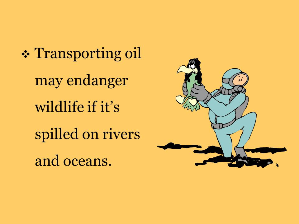  Transporting oil may endanger wildlife if it's spilled on rivers and oceans.
