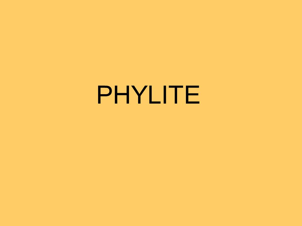PHYLITE