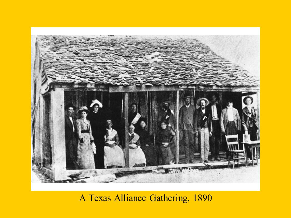 A Texas Alliance Gathering, 1890