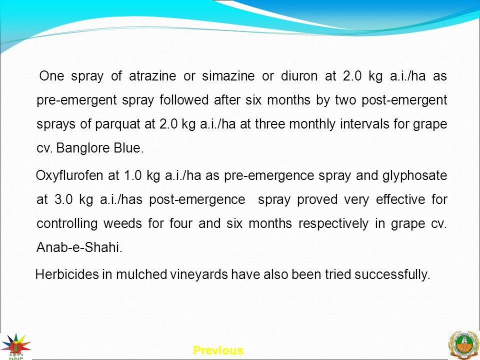 One spray of atrazine or simazine or diuron at 2.0 kg a.i./ha as pre-emergent spray followed after six months by two post-emergent sprays of parquat at 2.0 kg a.i./ha at three monthly intervals for grape cv.