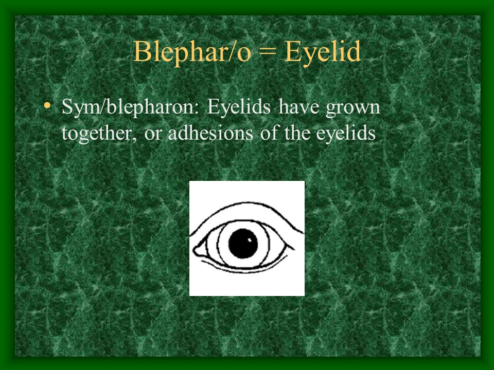 Blephar/o = Eyelid Sym/blepharon: Eyelids have grown together, or adhesions of the eyelids