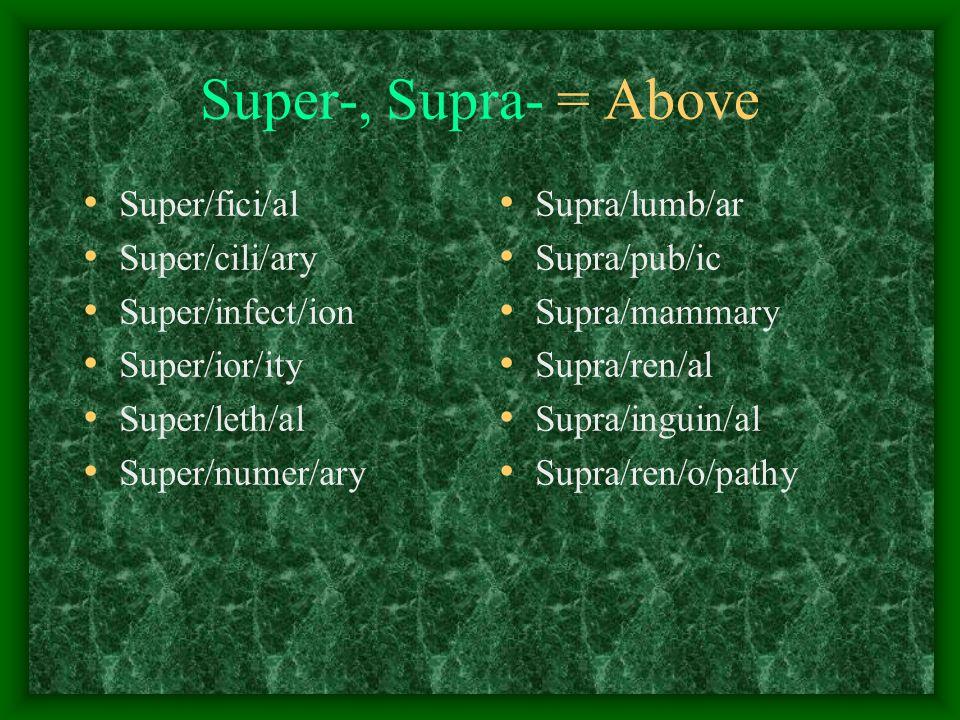 Super-, Supra- = Above Super/fici/al Super/cili/ary Super/infect/ion Super/ior/ity Super/leth/al Super/numer/ary Supra/lumb/ar Supra/pub/ic Supra/mammary Supra/ren/al Supra/inguin/al Supra/ren/o/pathy