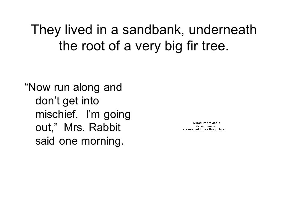 They lived in a sandbank, underneath the root of a very big fir tree.