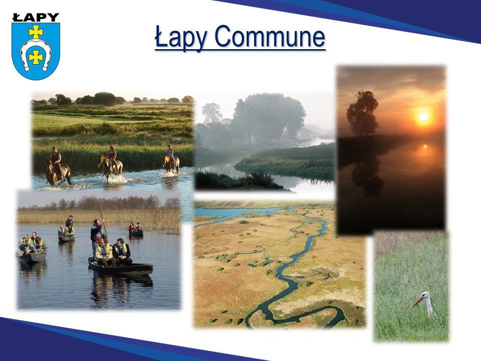 Łapy Commune