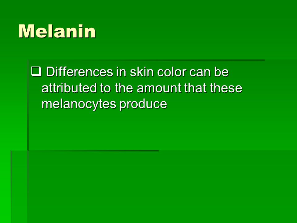 Melanin  Differences in skin color can be attributed to the amount that these melanocytes produce