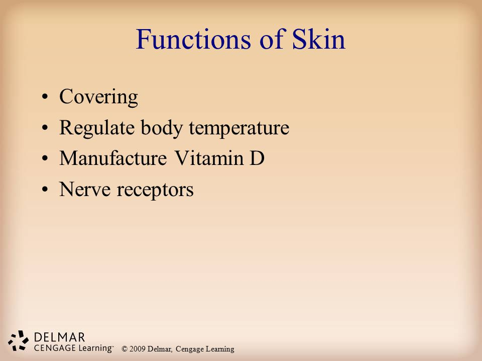 © 2009 Delmar, Cengage Learning Functions of Skin Covering Regulate body temperature Manufacture Vitamin D Nerve receptors