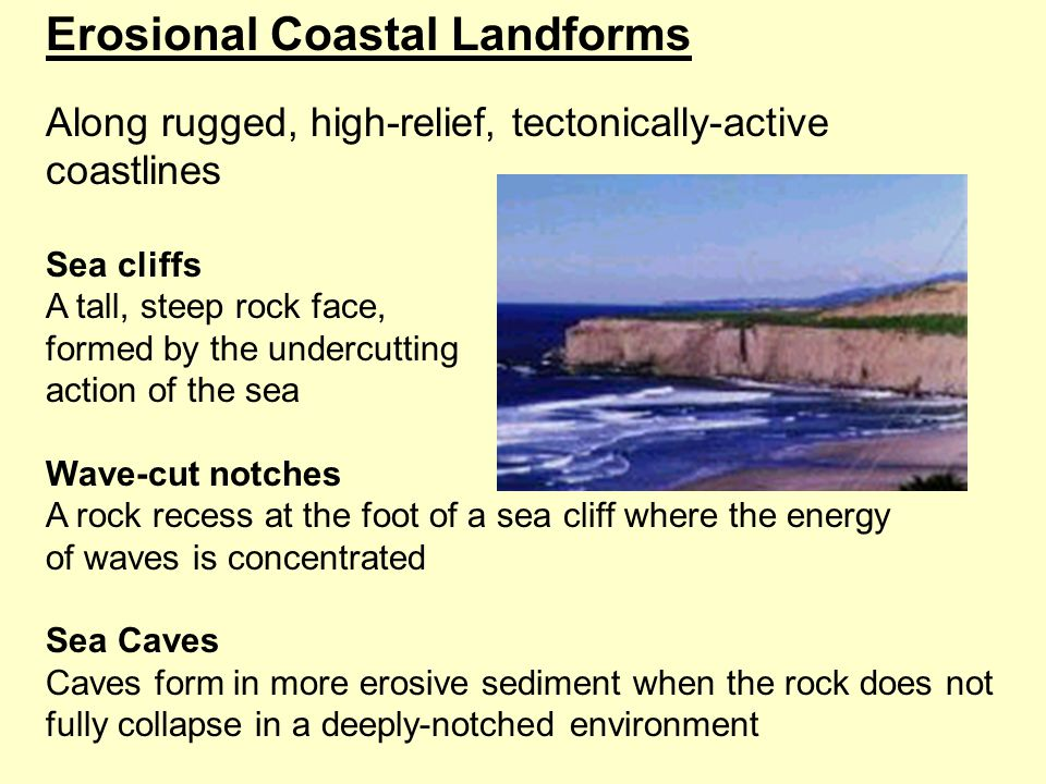 Erosional Coastal Landforms Along rugged, high-relief, tectonically-active coastlines Sea cliffs A tall, steep rock face, formed by the undercutting action of the sea Wave-cut notches A rock recess at the foot of a sea cliff where the energy of waves is concentrated Sea Caves Caves form in more erosive sediment when the rock does not fully collapse in a deeply-notched environment