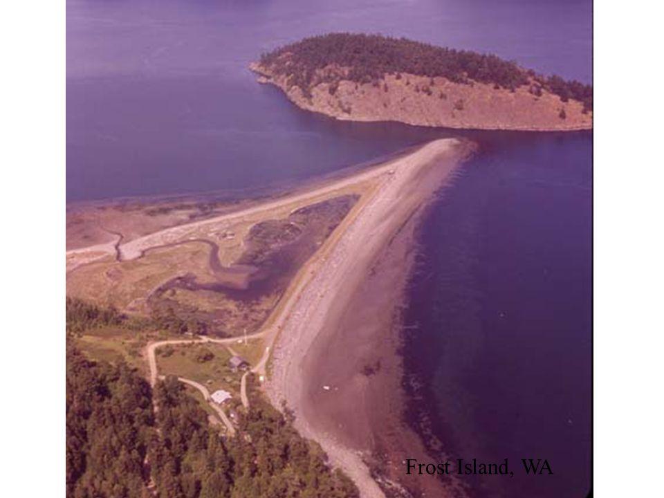 Frost Island, WA