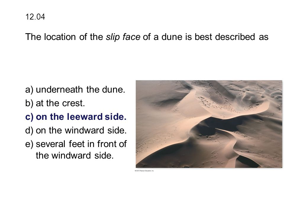 a)underneath the dune. b)at the crest. c)on the leeward side.