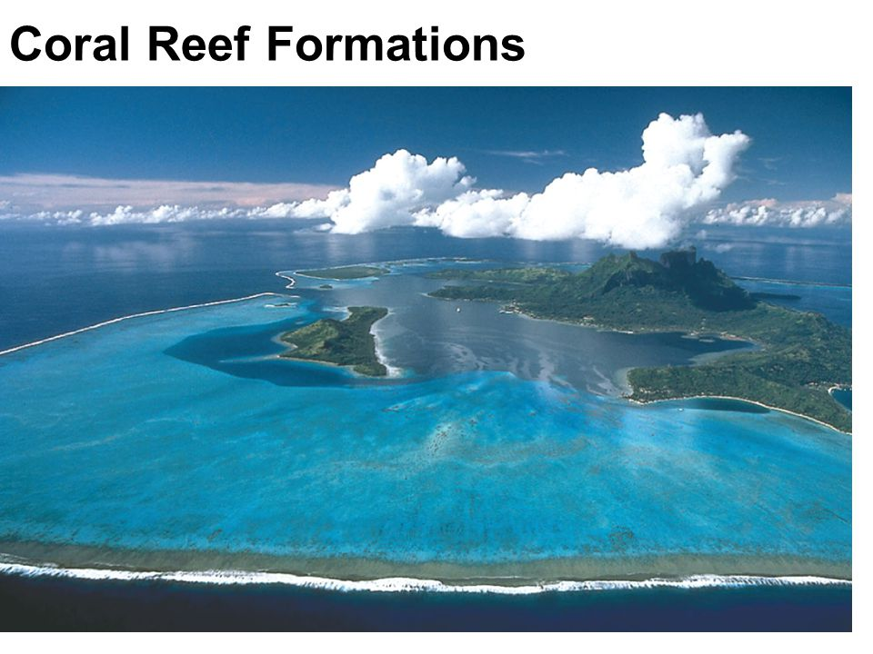 Coral Reef Formations