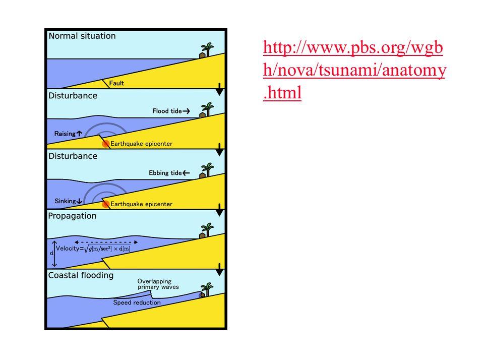 http://www.pbs.org/wgb h/nova/tsunami/anatomy.html