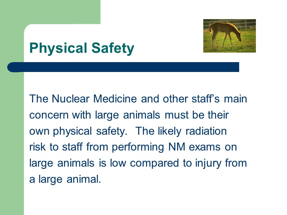 Physical Safety The Nuclear Medicine and other staff's main concern with large animals must be their own physical safety. The likely radiation risk to
