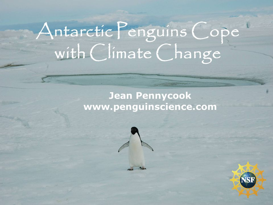 Jean Pennycook www.penguinscience.com Antarctic Penguins Cope with Climate Change