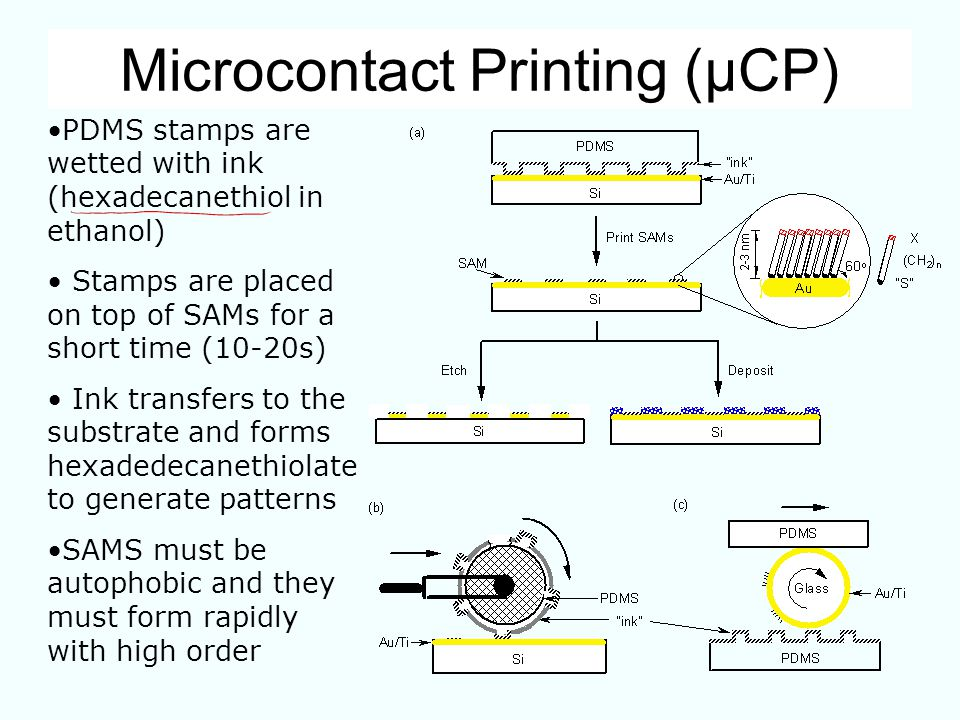 Microcontact Printing (µCP) PDMS stamps are wetted with ink (hexadecanethiol in ethanol) Stamps are placed on top of SAMs for a short time (10-20s) In
