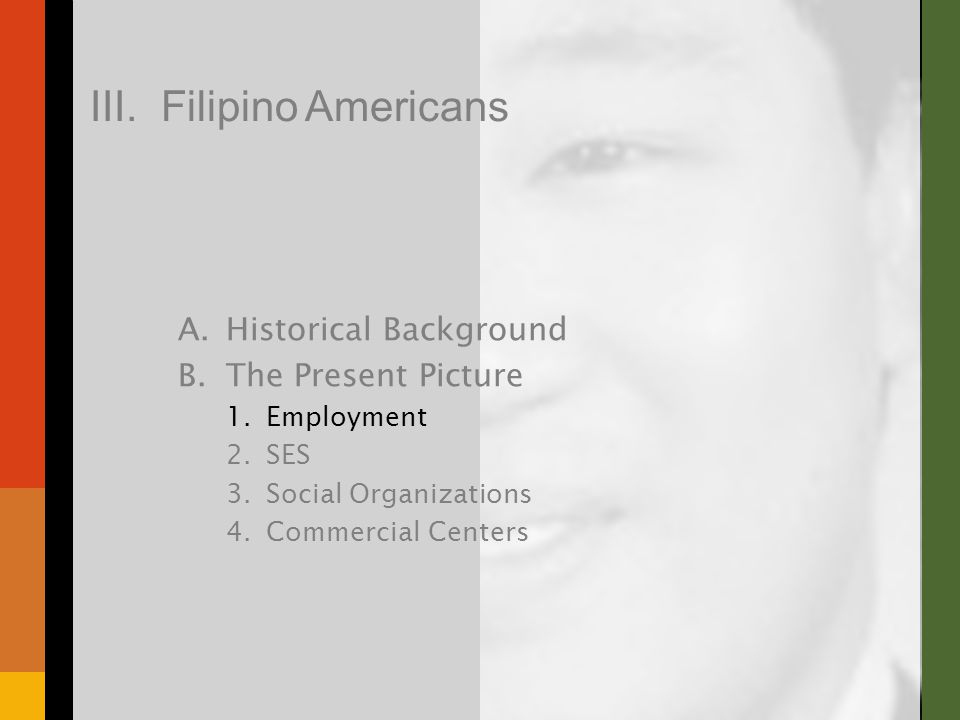 A.Historical Background B.The Present Picture 1.Employment 2.SES 3.Social Organizations 4.Commercial Centers III. Filipino Americans