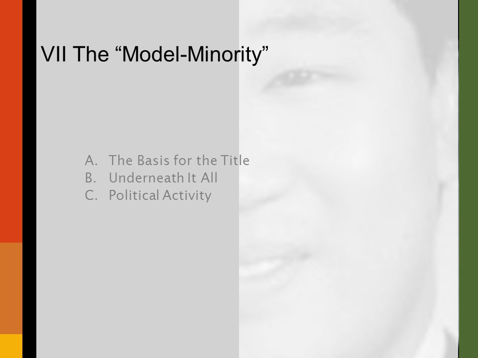 "VII The ""Model-Minority"" A.The Basis for the Title B.Underneath It All C.Political Activity"