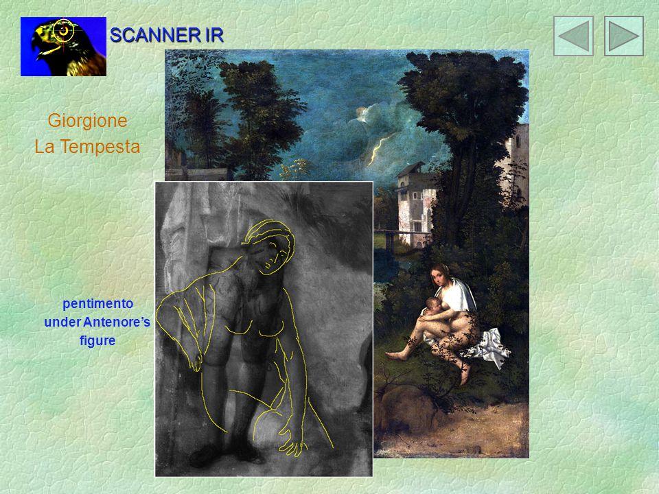 Giorgione La Tempesta pentimento under Antenore's figure SCANNER IR