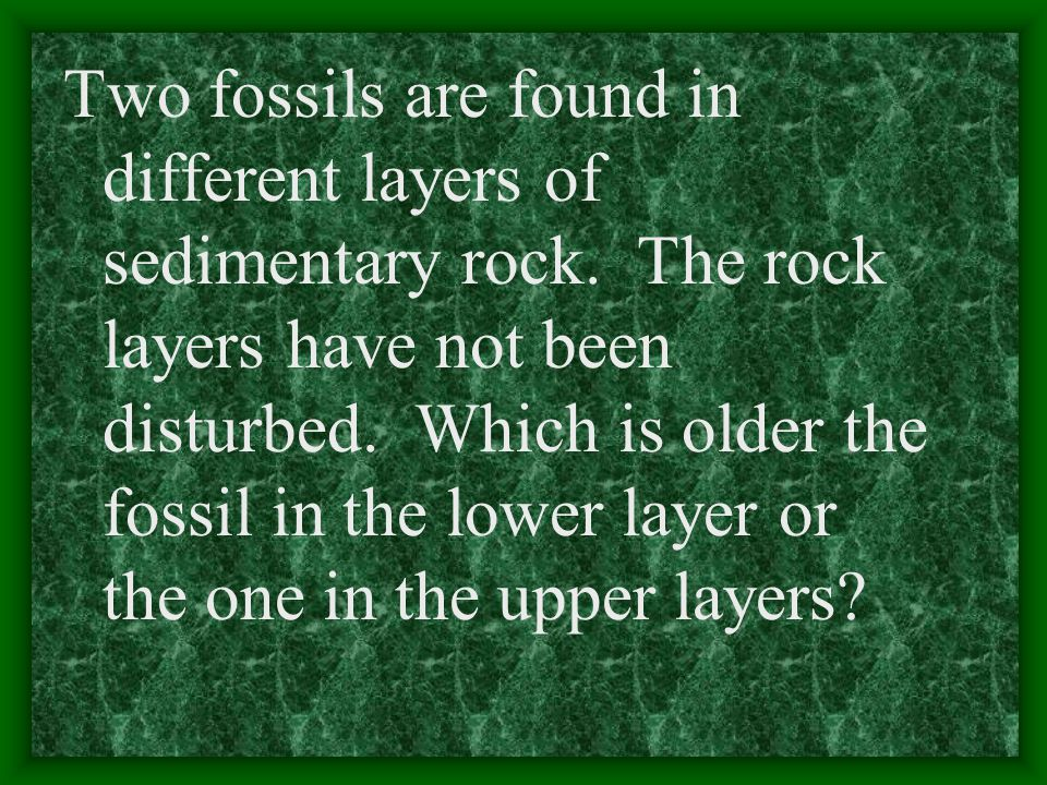 Two fossils are found in different layers of sedimentary rock.