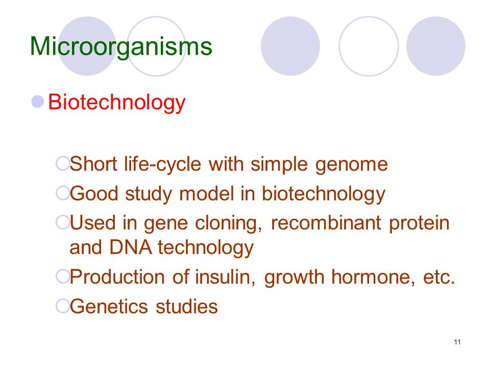 11 Microorganisms Biotechnology  Short life-cycle with simple genome  Good study model in biotechnology  Used in gene cloning, recombinant protein and DNA technology  Production of insulin, growth hormone, etc.