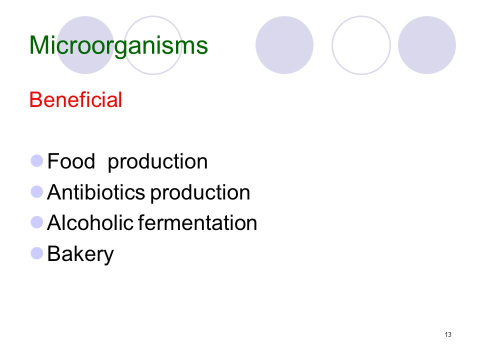 13 Microorganisms Beneficial Food production Antibiotics production Alcoholic fermentation Bakery