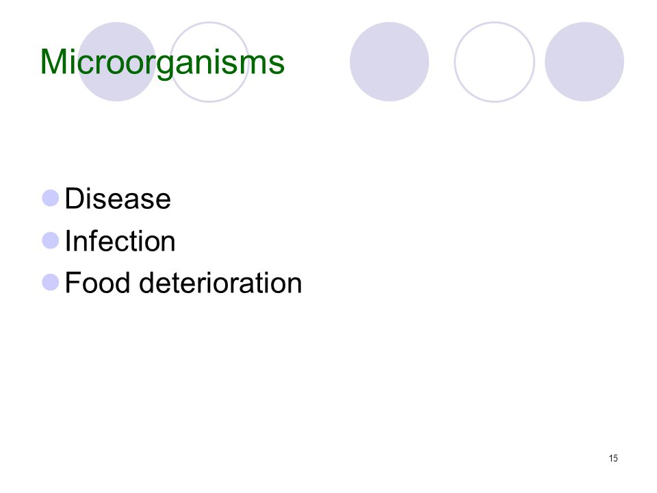 15 Microorganisms Disease Infection Food deterioration