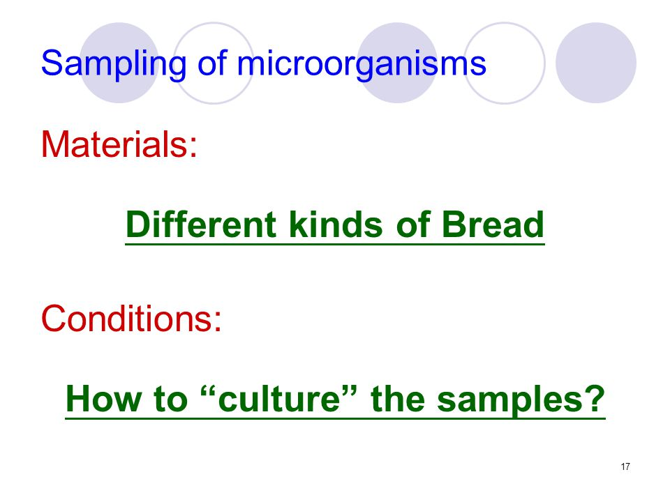17 Sampling of microorganisms Materials: Different kinds of Bread Conditions: How to culture the samples?