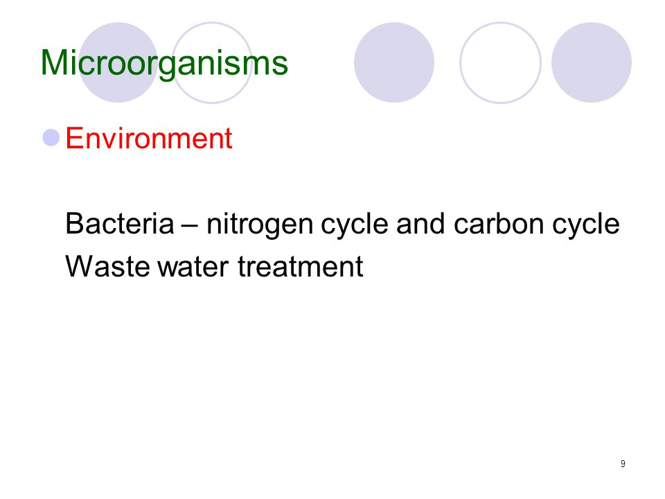 9 Microorganisms Environment Bacteria – nitrogen cycle and carbon cycle Waste water treatment