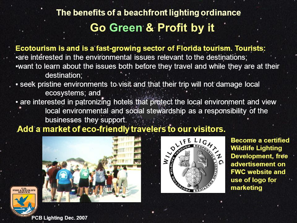 PCB Lighting Dec. 2007 Ecotourism is and is a fast-growing sector of Florida tourism. Tourists: are interested in the environmental issues relevant to
