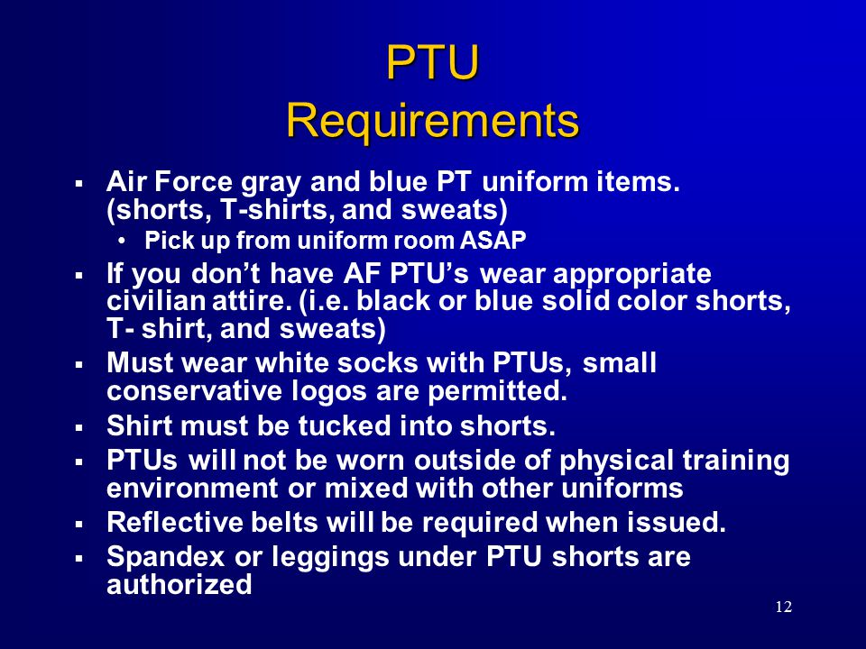12  Air Force gray and blue PT uniform items.