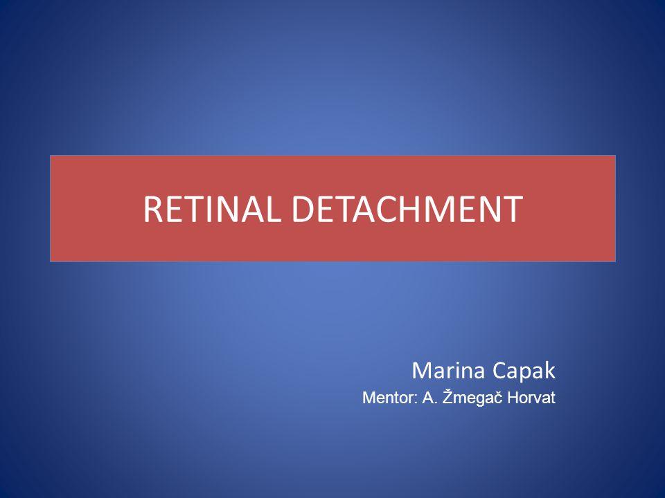 RETINAL DETACHMENT Marina Capak Mentor: A. Žmegač Horvat
