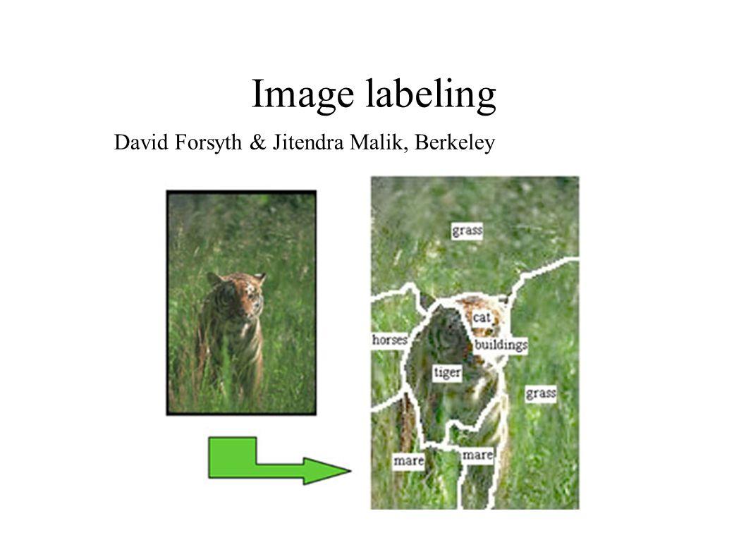 Image labeling David Forsyth & Jitendra Malik, Berkeley