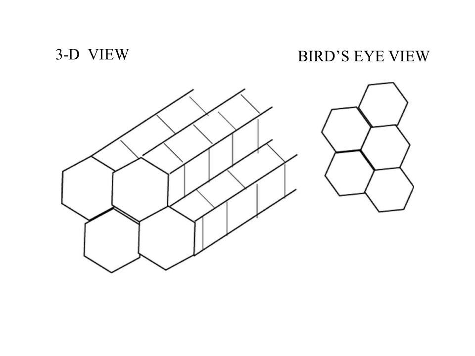 BIRD'S EYE VIEW 3-D VIEW
