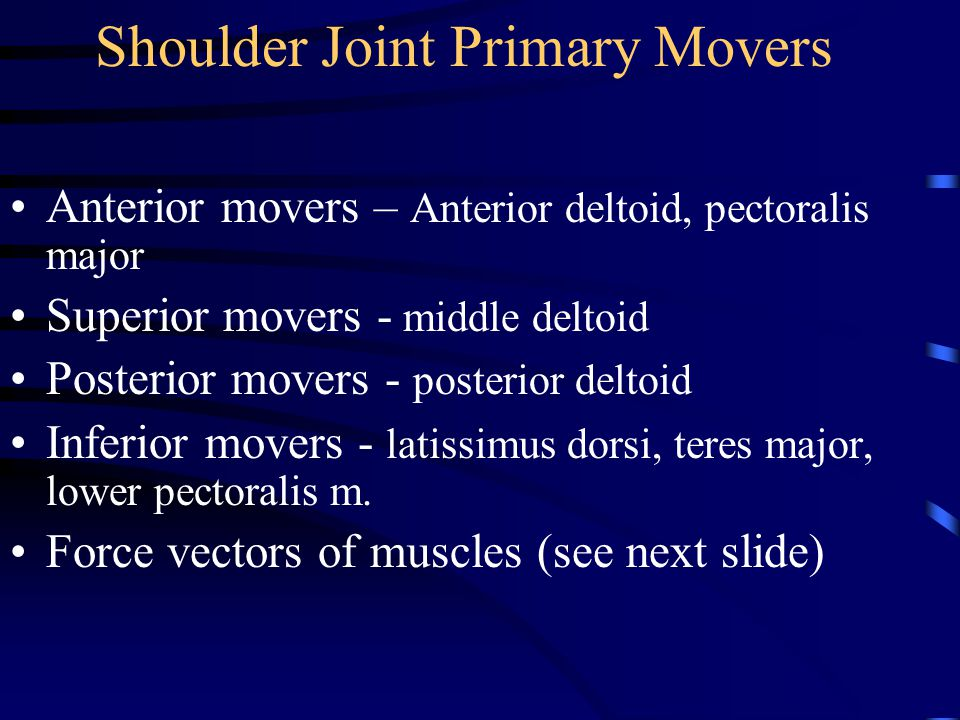 Shoulder Joint Primary Movers Anterior movers – Anterior deltoid, pectoralis major Superior movers - middle deltoid Posterior movers - posterior deltoid Inferior movers - latissimus dorsi, teres major, lower pectoralis m.