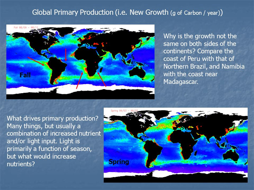 Global Primary Production (i.e.