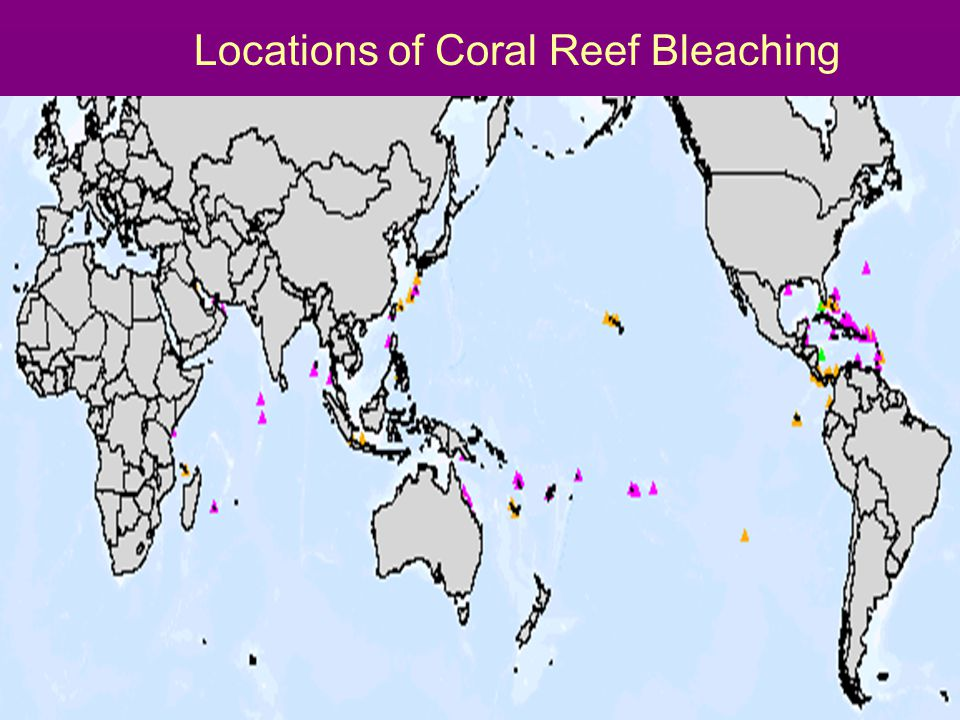 Locations of Coral Reef Bleaching