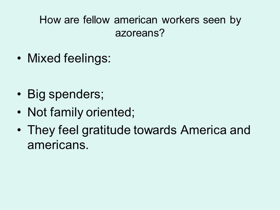How are fellow american workers seen by azoreans.